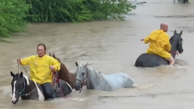 Owner of Cypress Trails Ranch speaks out after floods and viral video
