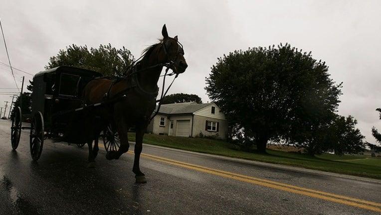 887a365e-GETTY horse drawn 2_1560009186493.png-402429.jpg