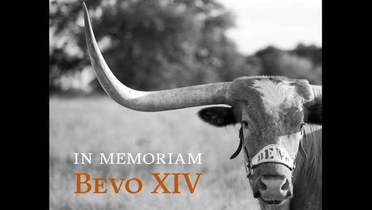 1c6df8e1-Bevo XiV