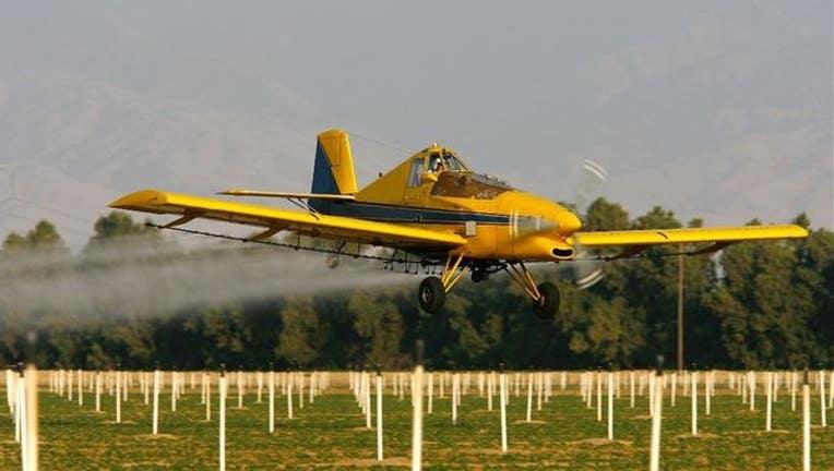 c43fe2b9-calfiornia crop getty_1557335001829.JPG-405538.jpg