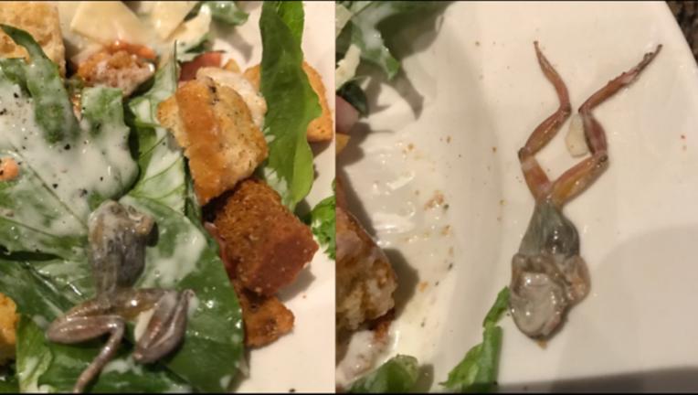 44d2efb4-frog in salad at restaurant_1498254067498-407068.PNG