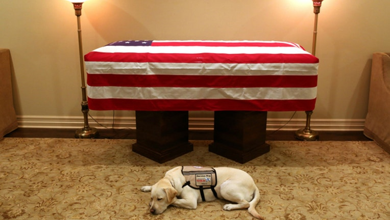 ghwbush service dog sully jim mcgrath_1543810682502.jpg-401720.jpg