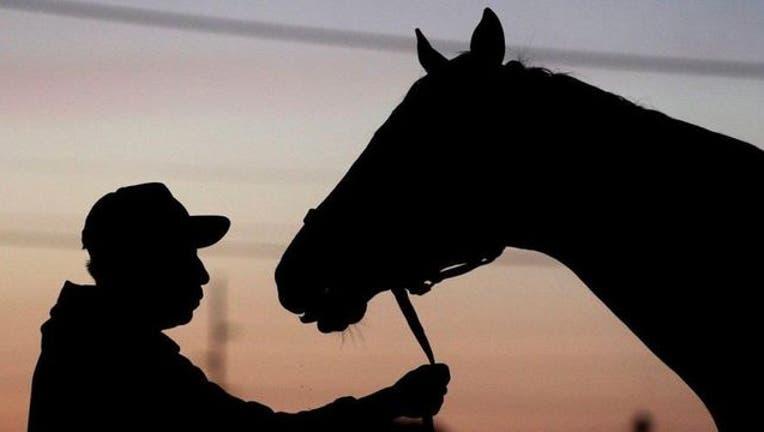 7cb196d6-kentucky-derby-horse_1462633491234-404023.jpg