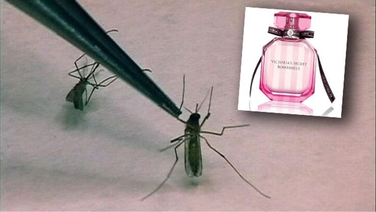 ddb034b3-mosquito_perfume-65880.jpg