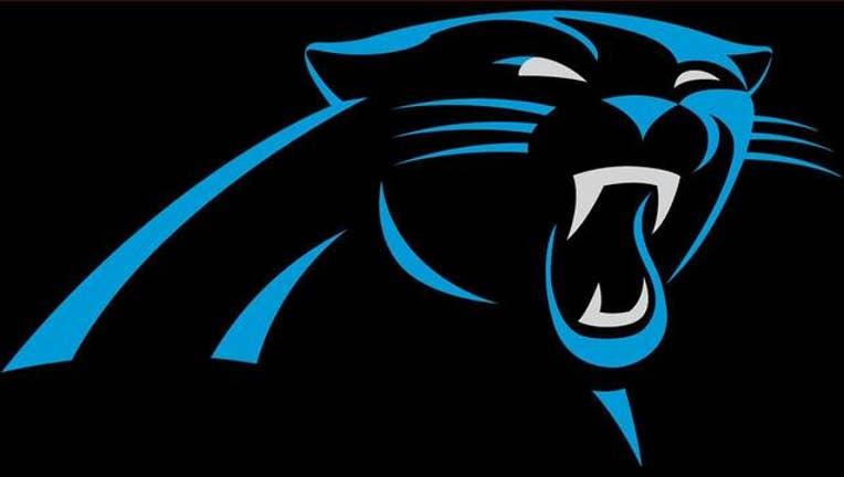 5017c9fe-panthers logo_1489192851999-403440.jpeg
