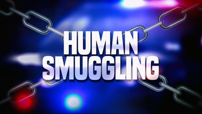 0c3cda31-HD GFX Human Smuggling