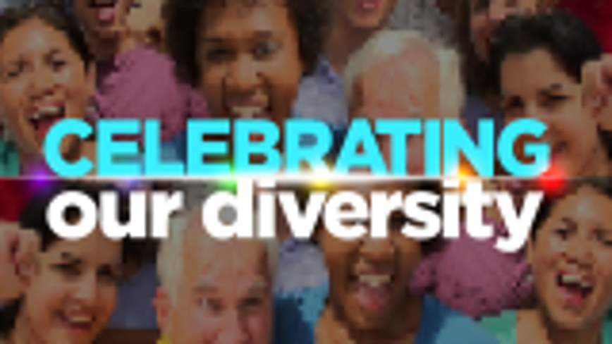 Almost 7 million people, more than 150 languages - Celebrating our Diversity