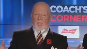 Don Cherry Canadian hockey announcer fired for remarks on air