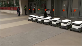 Self-driving food delivery robots hit University of Houston campus