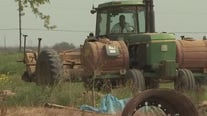 New legislation creates pathway to citizenship for undocumented farm workers