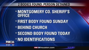 Two bodies found, one person in custody