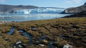 The Arctic may have crossed tipping point into destructive climate feedback loop, NOAA report says
