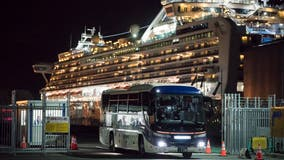 Japan: 2 former cruise ship passengers with COVID-19 virus die