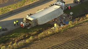70,000 pounds of pork spill on Southwest Freeway in Rosenberg