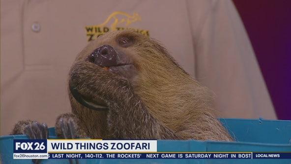 Wild Things Zoofari