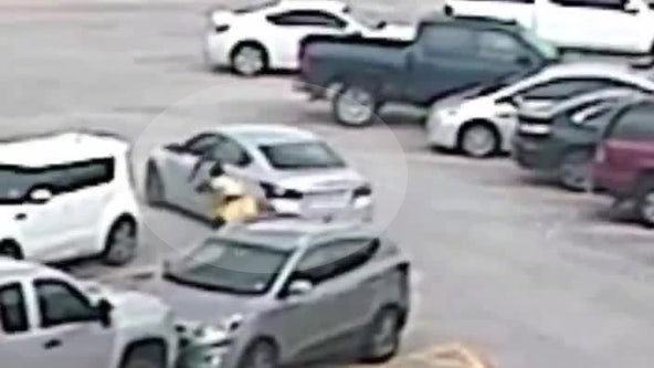 Suspect in moving car steals woman's purse in Willowbrook Mall parking lot