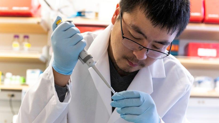 UT Coronavirus research