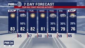Houston area weather forecast 3-29