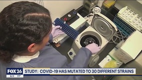 The virus known as COVID19 has mutated into 30 different strains