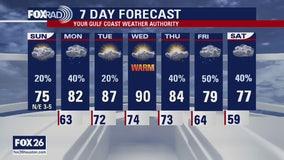 Houston area weather forecast 4/5