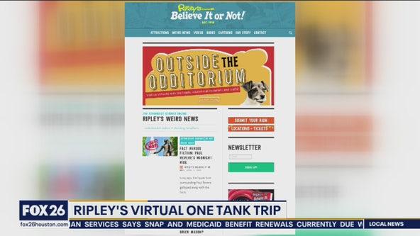 Ripley's virtual tour