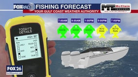 Fishing forecast - May 31, 2020