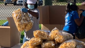 Houston ISD to launch curbside summer meals program June 1