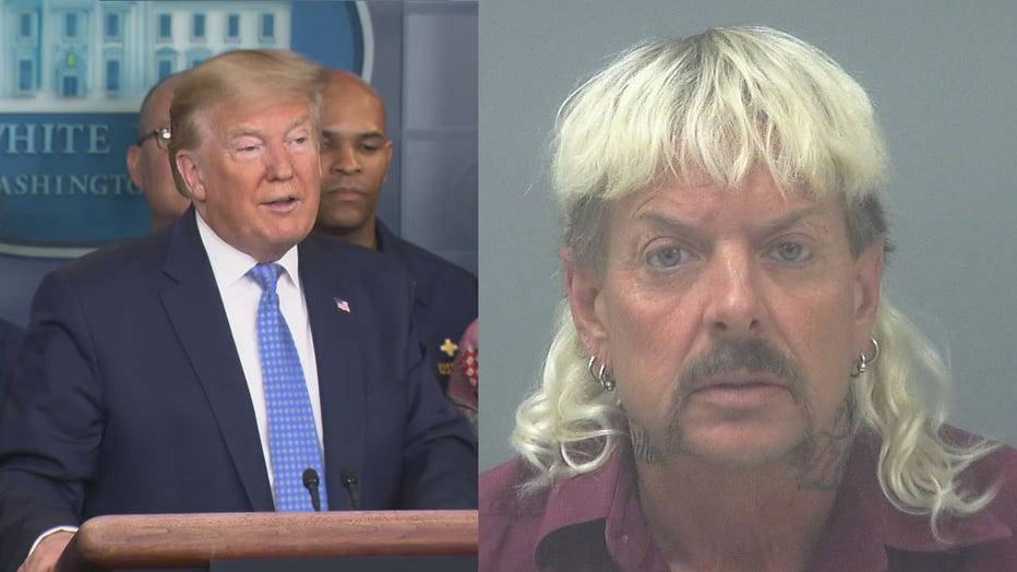 Trump and Joe exotic