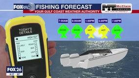 Fishing forecast Sunday June 12