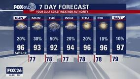 Houston-area weather forecast 7/5