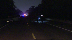 Two pedestrians hit by vehicle, two more injured in resulting crash in Harris Co.