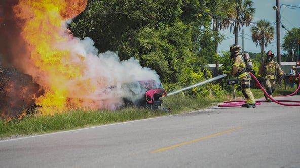 Car bursts into flames following Harris County crash