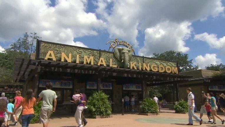 0a6bda58-Disney-Animal Kingdom_1454035938631.jpg