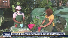 Local woman starts a farm to feed her community