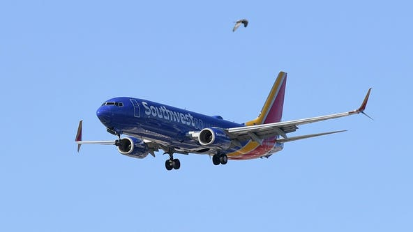 Southwest Airlines no longer cleaning armrests, seat belts between flights