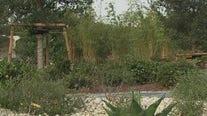 Houston Botanic Garden now open