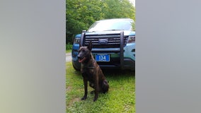 Police K9 tracks down missing Kindergartner lost in Maine woods