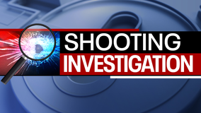 Houston Police investigate shooting after domestic dispute