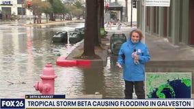 Chelsea Edwards in Galveston  8:30 A.M. Monday morning