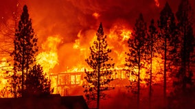 Climate change largely missing from 2020 presidential campaigns as fires rage in the US