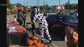 Residents enjoy safe trick-or-treating in Houston amid Covid-19 pandemic