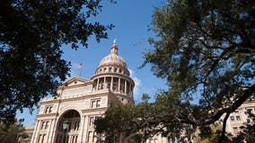Texas state legislative elections key to redistricting power
