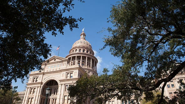 Texas state legislative elections key to redistricting power