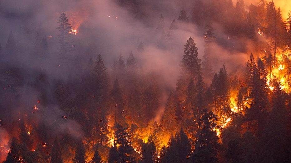 4c25ad0b-wildfire