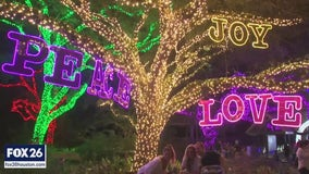 Houston Zoo Lights open to the public this Saturday