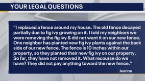 Your Legal Questions: Fence; rent fee; tree fell on car