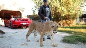 'Tiger King' star Jeff Lowe accused of inhumane treatment