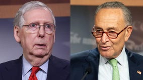 McConnell, Schumer re-elected to lead, but US Senate majority uncertain