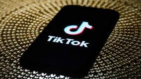 Federal judge postpones Trump's TikTok ban in suit brought by users