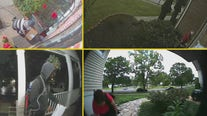 Harris County plans to catch porch pirates